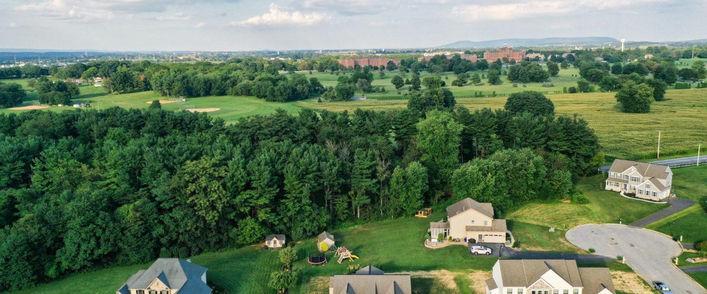 Timberline Estates